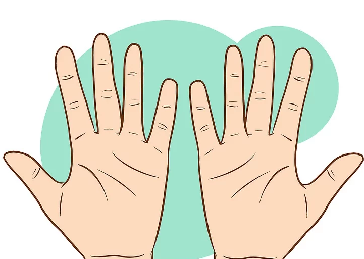 ¿Cómo leer las palmas de la mano?